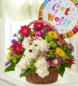 get well floral gifts