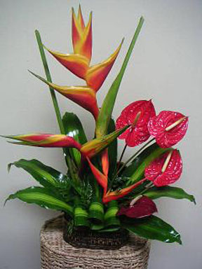 Basic floral design ideas to consider when using Tropical Flowers ...