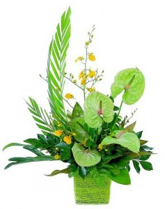 tropical flower arrangement 4